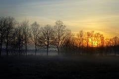 Por do sol em Teufelsmoor, Alemanha Fotos de Stock Royalty Free