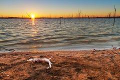 Por do sol em Truman Lake Fotografia de Stock Royalty Free
