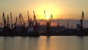 Por do sol em um fundo dos guindastes no porto Imagem de Stock