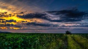 Por do sol em um lugar favorito 2 Foto de Stock