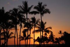Por do sol em uma ilha tropical Fotos de Stock Royalty Free