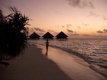 Por do sol em uma praia Imagens de Stock