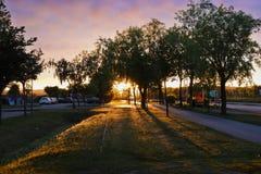 Por do sol em uma rua com sombras fotos de stock