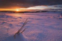 Por do sol encantado Fotografia de Stock