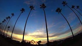 Por do sol 1 Encinitas Califórnia da palmeira dos SWAMIS vídeos de arquivo