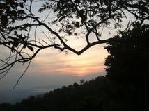 Por do sol entre ramos de árvore em Kota Kinabalu, Malásia Imagens de Stock Royalty Free