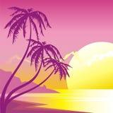 Por do sol exótico ilustração royalty free