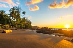 Por do sol exótico no parque nacional de Corcovado, Costa Rica fotografia de stock
