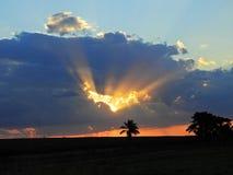 Por do sol fantástico no campo com céu alaranjado fotografia de stock