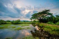 Por do sol Filipinas Imagens de Stock