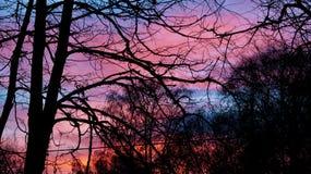 Por do sol fora Imagem de Stock Royalty Free