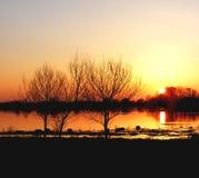 Por do sol frio do inverno Imagens de Stock