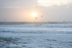 Por do sol frio na praia com espuma do mar, Dinamarca fotografia de stock
