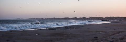 Por do sol frio na praia com espuma do mar e pássaros, Thisted, Dinamarca imagem de stock
