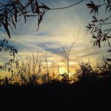 Por do sol fumarento da montanha Imagens de Stock