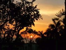 Por do sol havaiano Imagem de Stock