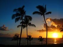 Por do sol havaiano Fotografia de Stock Royalty Free