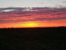 Por do sol intenso Foto de Stock Royalty Free