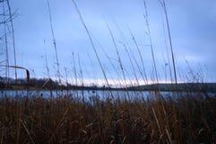 por do sol do lago foreground da Alto-grama com nuvens fotografia de stock royalty free