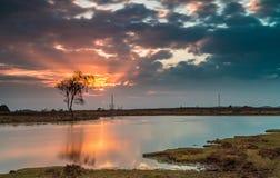 Por do sol longo da lagoa Imagem de Stock