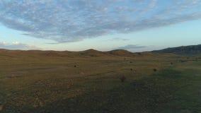 Por do sol maravilhoso com campo largo tiro Céu azul bonito, nuvens alaranjadas, e montes no fundo filme