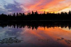 Por do sol na área da conservação do lago island fotos de stock royalty free