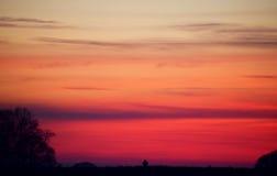 Por do sol na área rural holandesa com árvores da silhueta Fotos de Stock Royalty Free