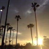 Por do sol na alameda Imagem de Stock