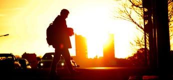Por do sol na cidade de Aucland Imagem de Stock