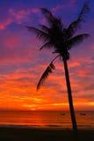 Por do sol na costa de Vietnam Foto de Stock