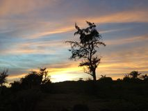 Por do sol na costa leste da ilha de Kauai, Havaí Imagens de Stock