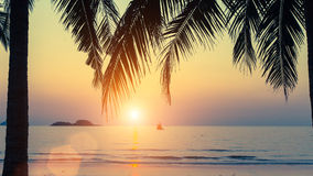 Por do sol na costa tropical Imagens de Stock