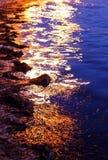 Por do sol na erva daninha do mar