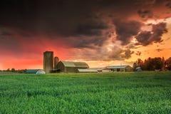 Por do sol na exploração agrícola Fotos de Stock