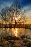 Por do sol na lagoa Imagens de Stock Royalty Free