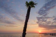 Por do sol na opinião do Mar Negro na palma perto da costa fotografia de stock royalty free