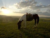 Por do sol na pastagem de Inner Mongolia Fotografia de Stock