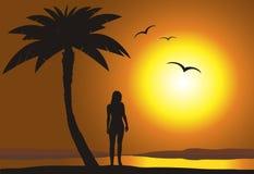 Por do sol na praia ilustração stock