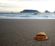 Por do sol na praia Fotografia de Stock Royalty Free