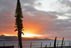 Por do sol na praia de Gran Canaria fotografia de stock royalty free