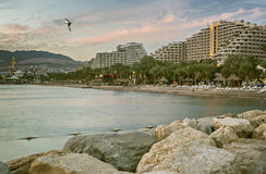 Por do sol na praia do norte de Eilat Imagens de Stock