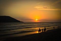 Por do sol na praia e na equitação Fotografia de Stock
