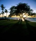 Por do sol na praia hawaian fotografia de stock royalty free