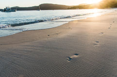 Por do sol na praia II de Whitehaven Imagem de Stock Royalty Free