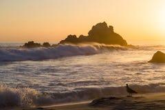 Por do sol na praia no parque estadual de Pfeiffer, Big Sur, Califórnia imagem de stock royalty free