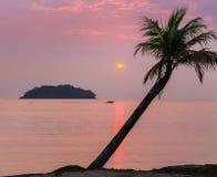 Por do sol na praia tropical imagens de stock royalty free