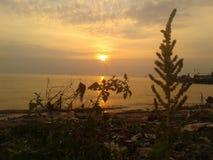 Por do sol na tarde foto de stock