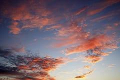 Por do sol nacional grande da conserva de Cypress fotografia de stock
