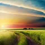 Por do sol nas nuvens sobre a estrada no campo verde fotos de stock