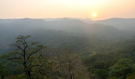 Por do sol nas selvas fotos de stock